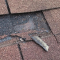 You May Be Able To Repair A Shingle Roof In Three Easy Steps