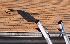 How are the conditions of your roofing shingles?
