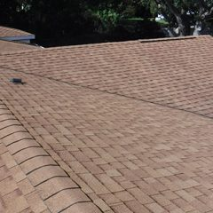 A Shingle Roof Typically Last How Long?