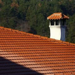 Have you ever had your Chimney Checked?